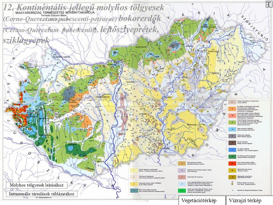 Vízrajzi térképVegetációtérkép 12. Kontinentális jellegű molyhos tölgyesek (Corno-Quercetum pubescenti-petraeae) bokorerdők (Ceraso-Quercetum pubescen