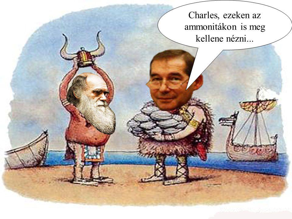 Charles, ezeken az ammonitákon is meg kellene nézni...