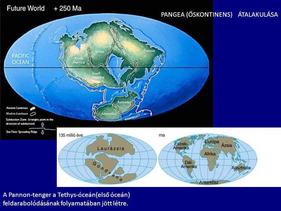 PANGEA (ŐSKONTINENS) ÁTALAKULÁSA A Pannon-tenger a Tethys-óceán(első óceán) feldarabolódásának folyamatában jött létre.