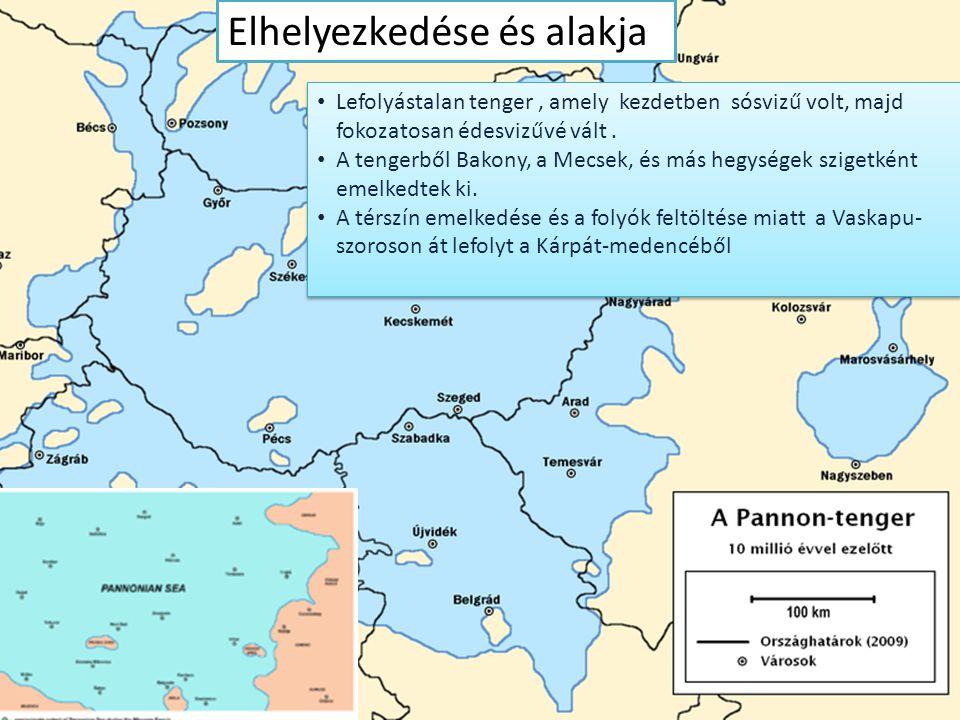 Elhelyezkedése és alakja Lefolyástalan tenger, amely kezdetben sósvizű volt, majd fokozatosan édesvizűvé vált. A tengerből Bakony, a Mecsek, és más he
