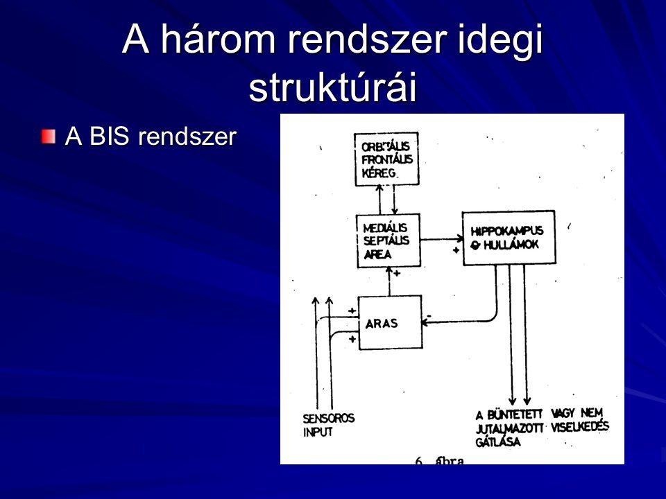 A három rendszer idegi struktúrái A BIS rendszer