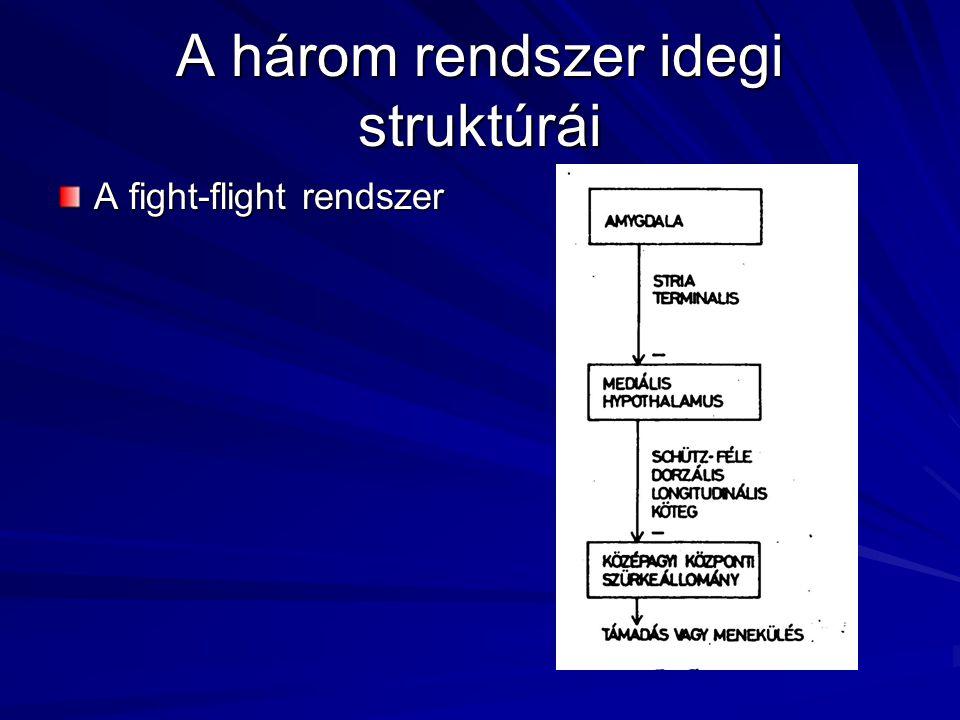 A három rendszer idegi struktúrái A fight-flight rendszer