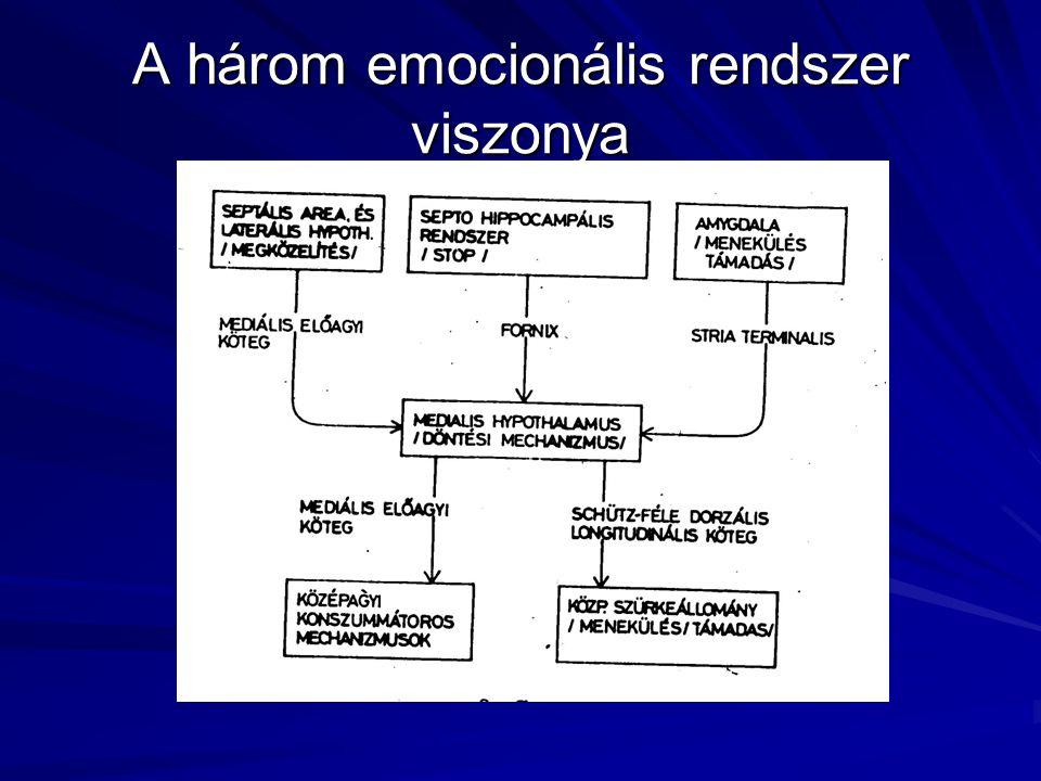 A három emocionális rendszer viszonya