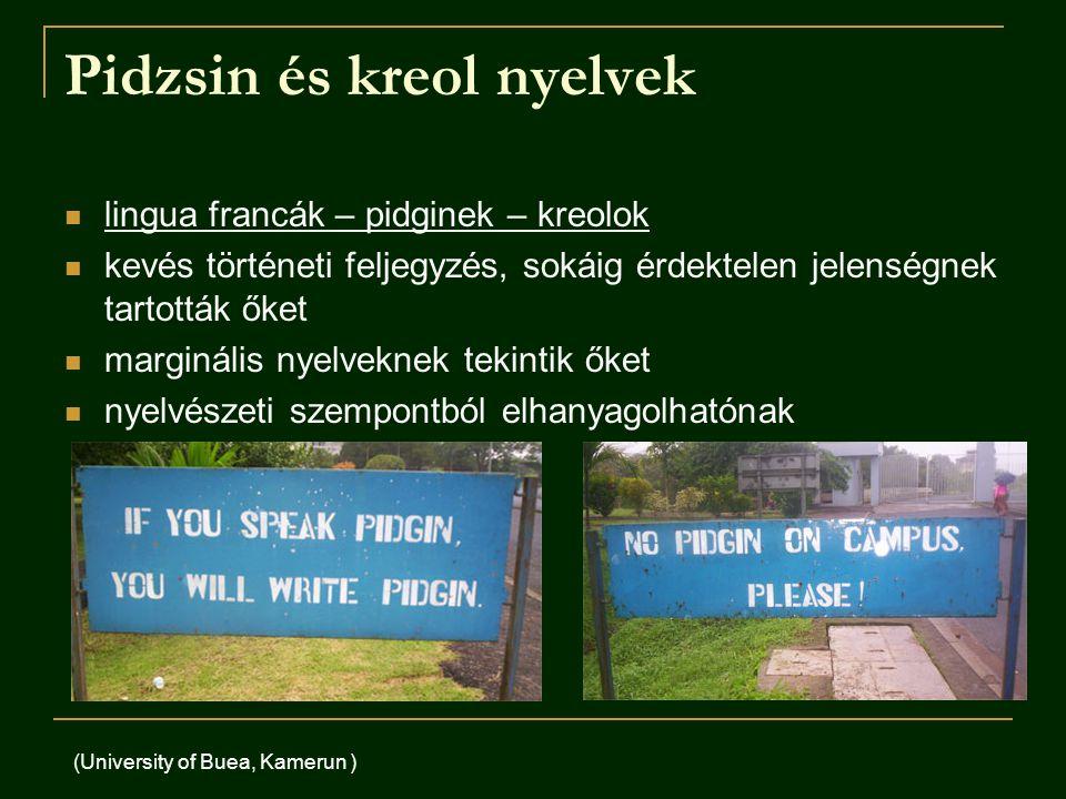 Pidzsin és kreol nyelvek lingua francák – pidginek – kreolok kevés történeti feljegyzés, sokáig érdektelen jelenségnek tartották őket marginális nyelveknek tekintik őket nyelvészeti szempontból elhanyagolhatónak (University of Buea, Kamerun )