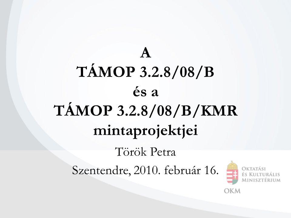 A TÁMOP 3.2.8/08/B és a TÁMOP 3.2.8/08/B/KMR mintaprojektjei Török Petra Szentendre, 2010.