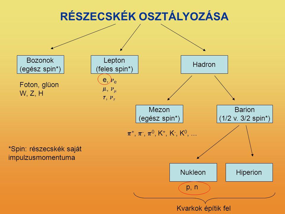 RÉSZECSKÉK OSZTÁLYOZÁSA Bozonok (egész spin*) Lepton (feles spin*) Hadron Barion (1/2 v. 3/2 spin*) Mezon (egész spin*) HiperionNukleon e, e ,  , 