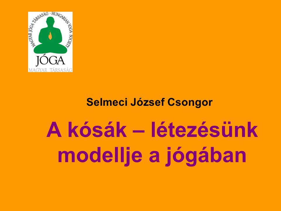 A kósák – létezésünk modellje a jógában Selmeci József Csongor