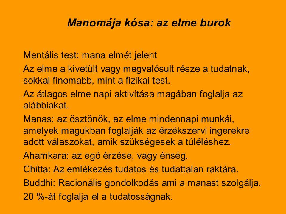 Az Ánandamája kósa 1.