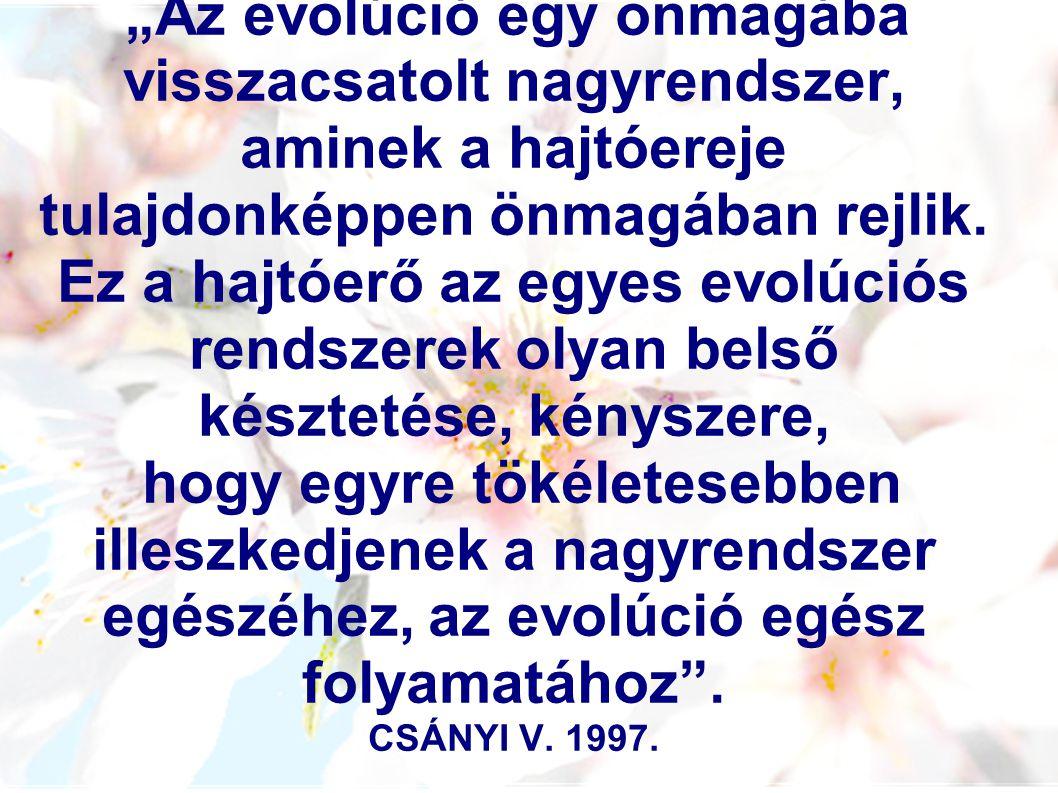 """""""Az evolúció egy önmagába visszacsatolt nagyrendszer, aminek a hajtóereje tulajdonképpen önmagában rejlik."""