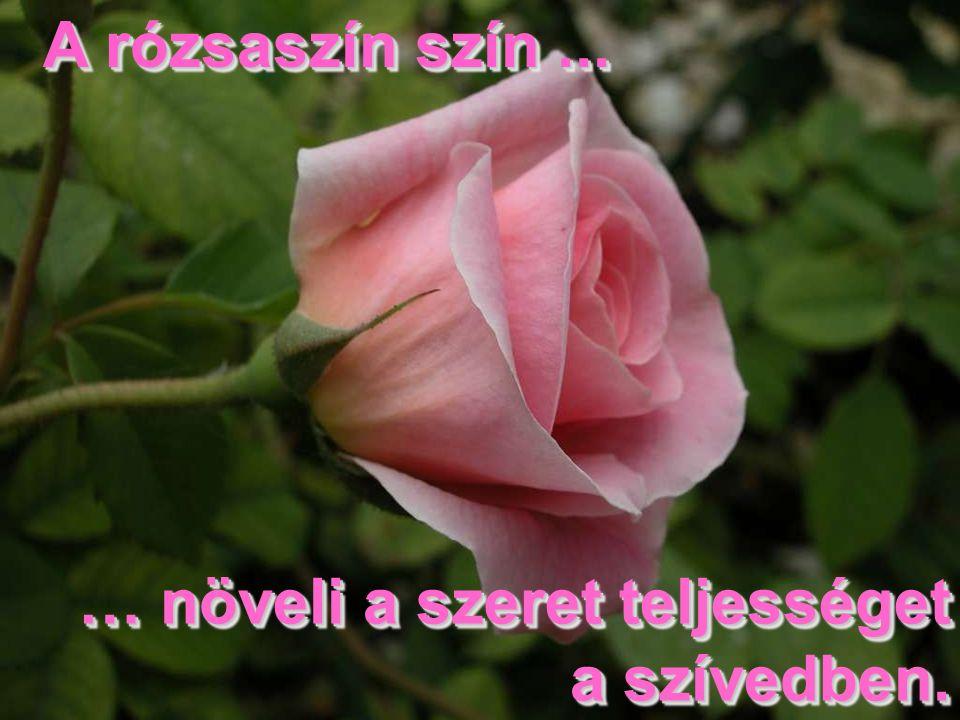 A rózsaszín szín... A rózsaszín szín... … növeli a szeret teljességet a szívedben.