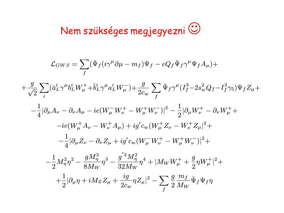 Eddig képekben mutattuk be a Standard modellt most bemutatom az elméleti számolásokban használt egyenleteket (rövidített alak) Az elméleti fizikusok ennél ijesztőbb egyenletekkel számolnak, így csak egy másodpercre villantom fel