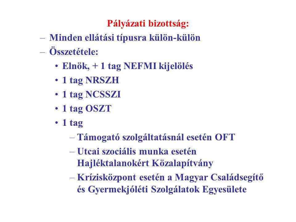Pályázati bizottság: –Minden ellátási típusra külön-külön –Összetétele: Elnök, + 1 tag NEFMI kijelölés 1 tag NRSZH 1 tag NCSSZI 1 tag OSZT 1 tag –Támo