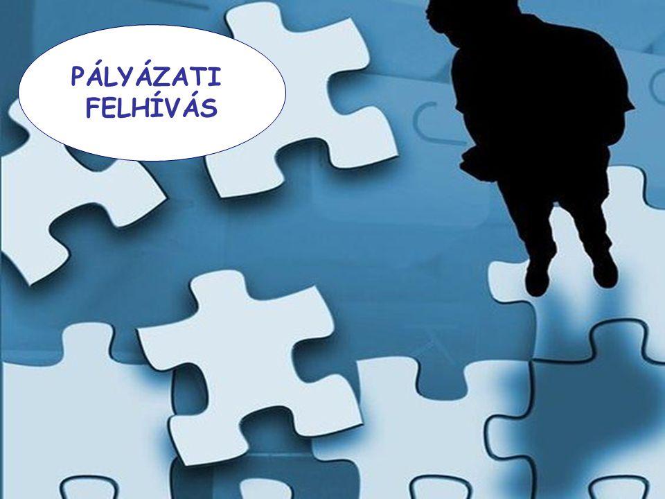 Szakmai program 2011-től Tartalmi előírásai szűkültek és a támogató szolgáltatásnál hatályon kívül helyezték a speciális szabályokat.
