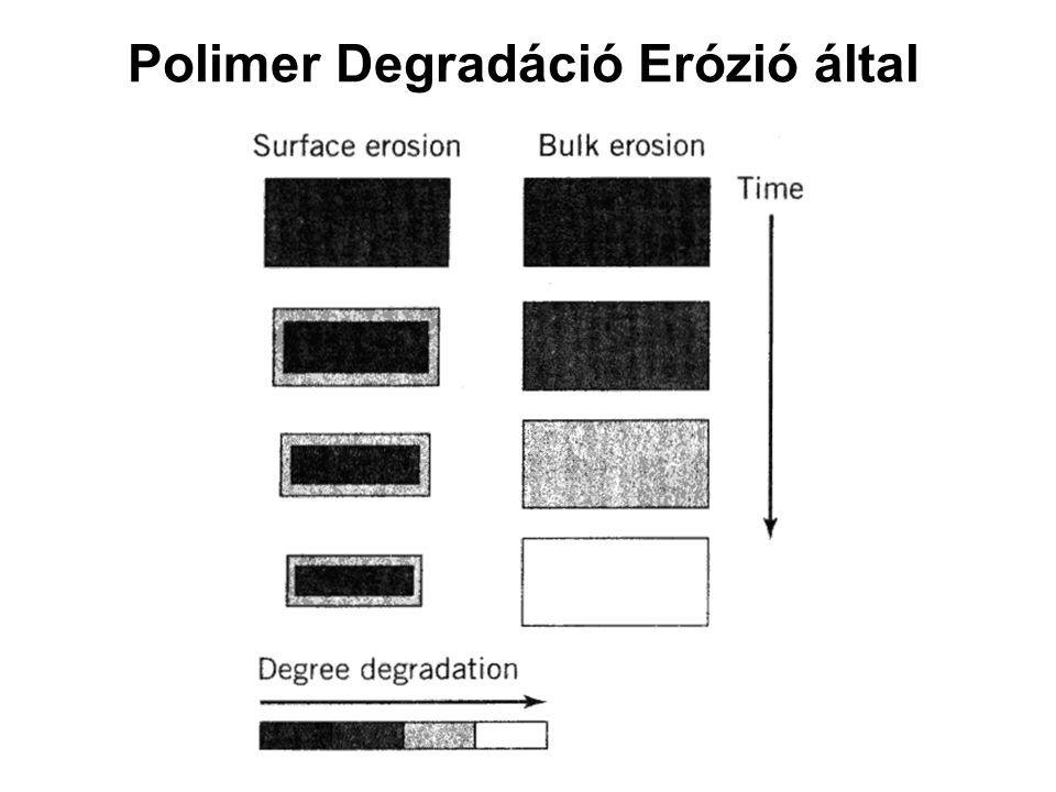 Polimer Degradáció Erózió által