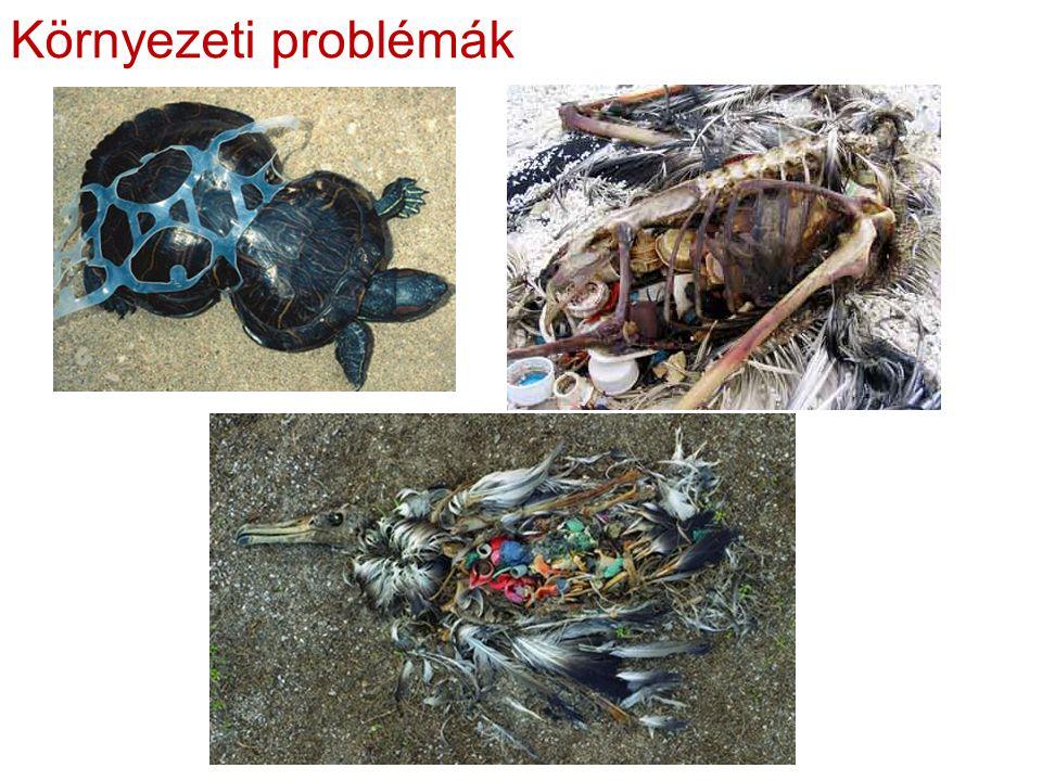 Környezeti problémák