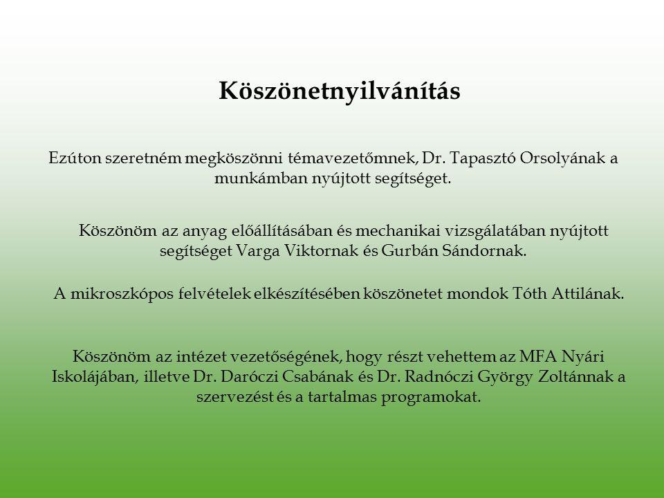 Ezúton szeretném megköszönni témavezetőmnek, Dr. Tapasztó Orsolyának a munkámban nyújtott segítséget. Köszönöm az anyag előállításában és mechanikai v