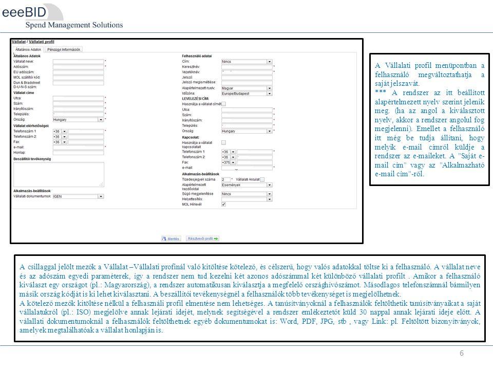 6 A Vállalati profil menüpontban a felhasználó megváltoztathatja a saját jelszavát.