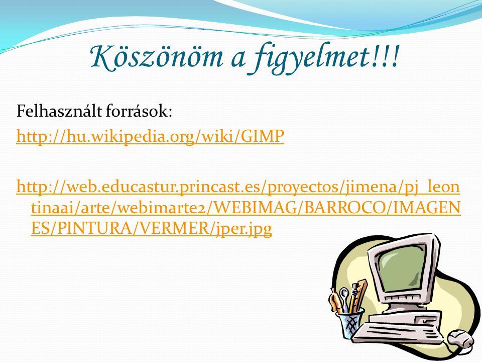 Köszönöm a figyelmet!!! Felhasznált források: http://hu.wikipedia.org/wiki/GIMP http://web.educastur.princast.es/proyectos/jimena/pj_leon tinaai/arte/