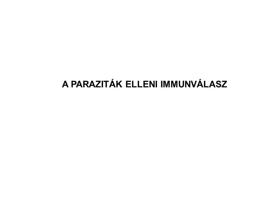 A PARAZITÁK ELLENI IMMUNVÁLASZ