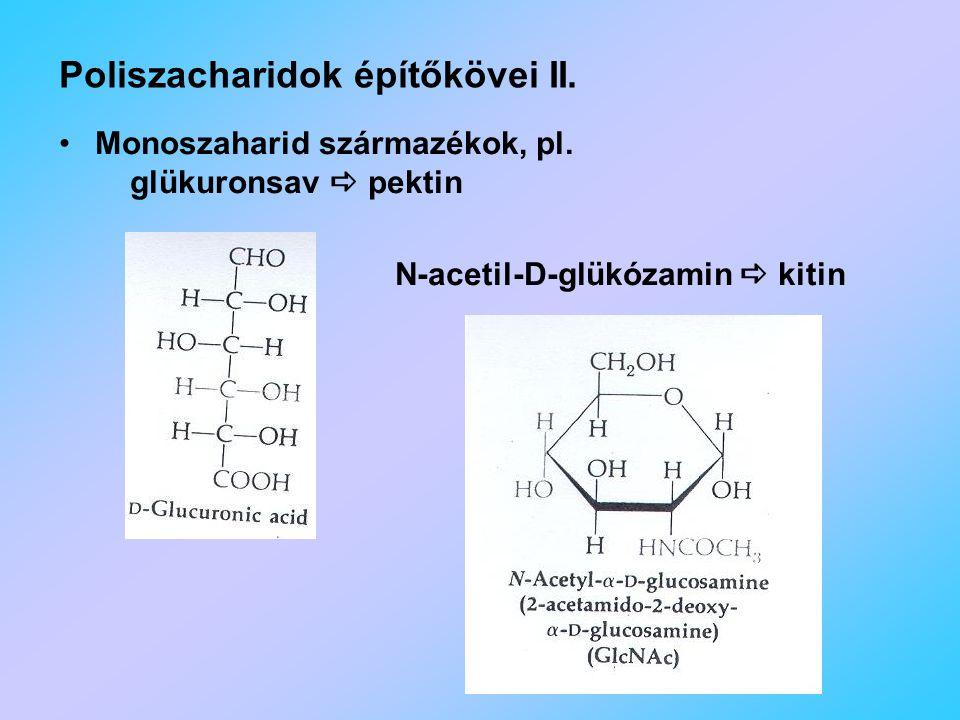 Poliszacharidok építőkövei II.Monoszaharid származékok, pl.