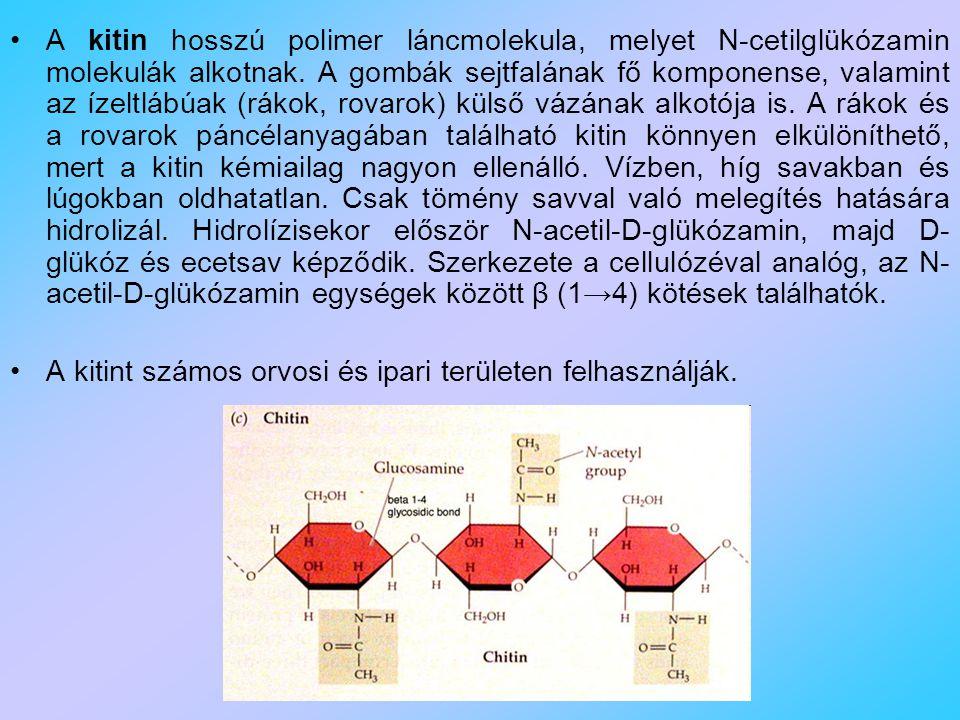 A kitin hosszú polimer láncmolekula, melyet N-cetilglükózamin molekulák alkotnak.