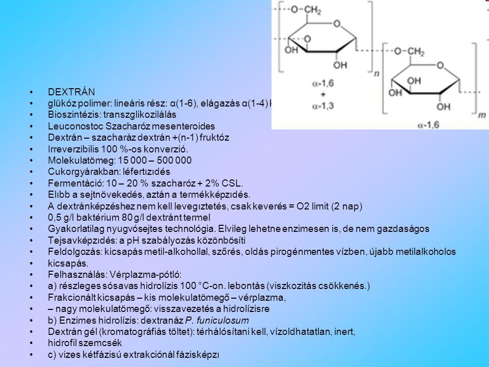 DEXTRÁN glükóz polimer: lineáris rész: α(1-6), elágazás α(1-4) kötéssel Bioszintézis: transzglikozilálás Leuconostoc Szacharóz mesenteroides Dextrán – szacharáz dextrán +(n-1) fruktóz Irreverzibilis 100 %-os konverzió.