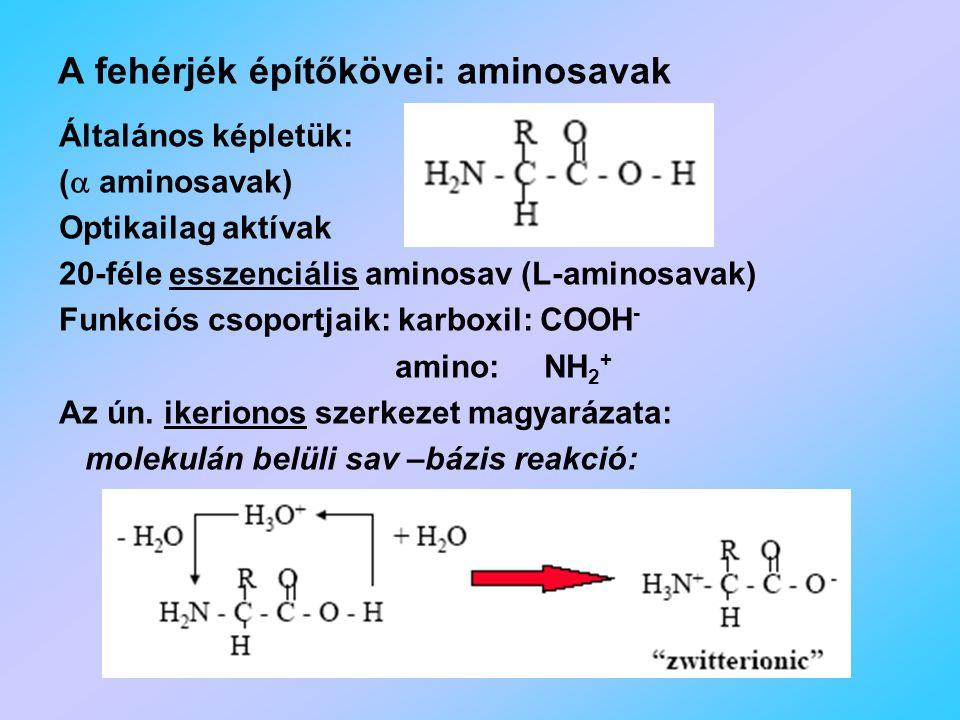A fehérjék építőkövei: aminosavak Általános képletük: (  aminosavak) Optikailag aktívak 20-féle esszenciális aminosav (L-aminosavak) Funkciós csoportjaik: karboxil: COOH - amino: NH 2 + Az ún.