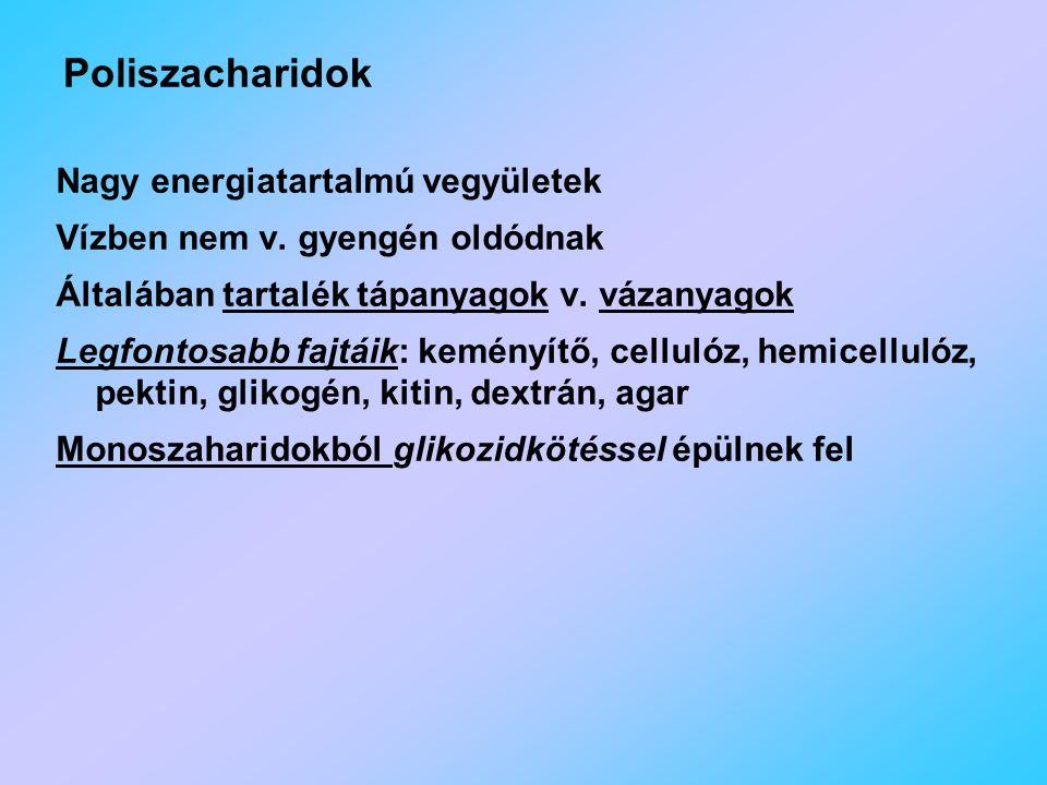 Nagy energiatartalmú vegyületek Vízben nem v.gyengén oldódnak Általában tartalék tápanyagok v.