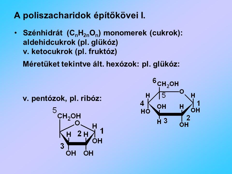 A poliszacharidok építőkövei I.Szénhidrát (C n H 2n O n ) monomerek (cukrok): aldehidcukrok (pl.
