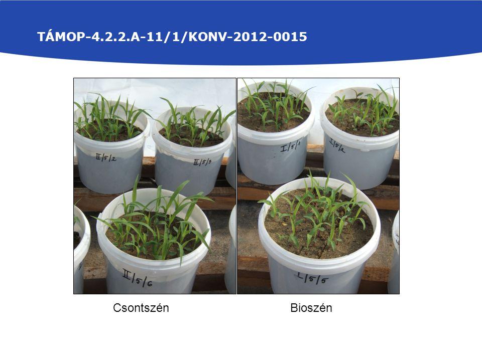 TÁMOP-4.2.2.A-11/1/KONV-2012-0015 Csontszén Bioszén