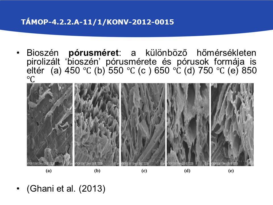 Bioszén pórusméret: a különböző hőmérsékleten pirolizált 'bioszén' pórusmérete és pórusok formája is eltér (a) 450 ℃ (b) 550 ℃ (c ) 650 ℃ (d) 750 ℃ (e