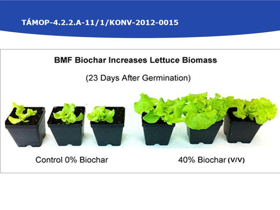 TÁMOP-4.2.2.A-11/1/KONV-2012-0015 Növényi bioteszt Növény-, és gyökérfejlettség Légszáraz tömeg meghatározása Talajvizsgálatok Kémhatás (pH H 2 O, pH KCl) Vízoldható összessó-tartalom A talaj könnyen oldható P és K-tartalom (AL P 2 O 5 és AL K 2 O) Szervesanyag tartalom (Tyurin módszer) Növényvizsgálatok Összes P- és összes K-tartalom meghatározás (kénsavas roncsolás) Mikroelem meghatározás sósavas hidrolízis után atomabszorpciós spektrofotometriával (Ca, Mg, Cu, Mn, Fe, Zn, Cr)