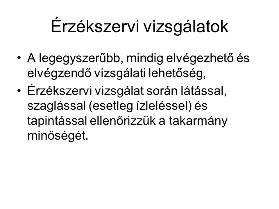 Érzékszervi vizsgálatok II.