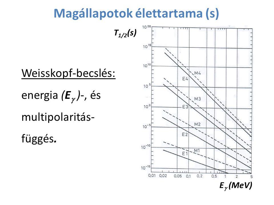 Magállapotok élettartama (s) Weisskopf-becslés: energia (E  )-, és multipolaritás- függés. E   (MeV) T 1/2 (s)