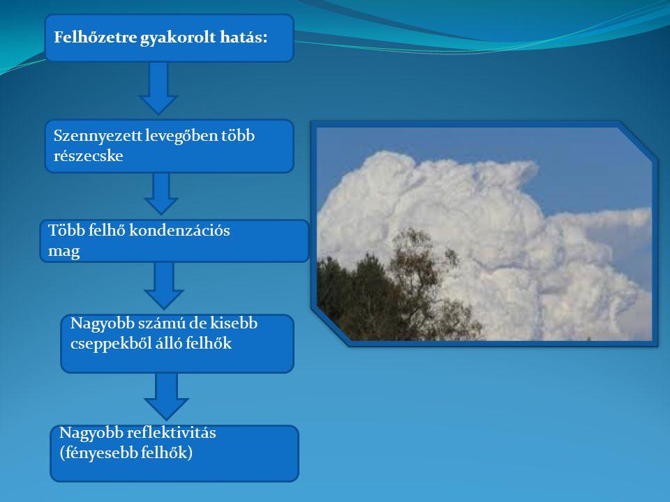 """A levegőszennyezés következménye az üvegházhatás fokozódása és az ózonréteg sérülése A """"látható"""" levegőszennyezés- szmog"""