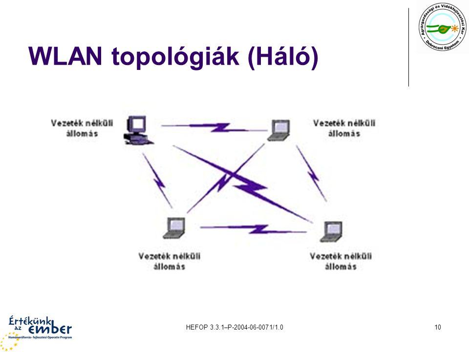 HEFOP 3.3.1–P-2004-06-0071/1.010 WLAN topológiák (Háló)