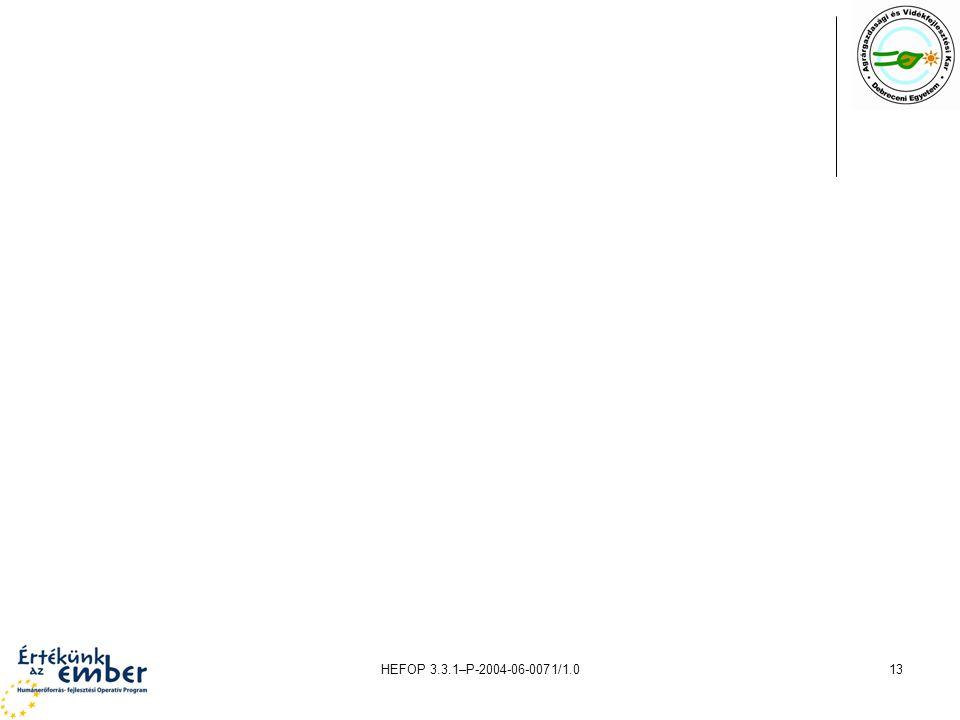 HEFOP 3.3.1–P-2004-06-0071/1.013