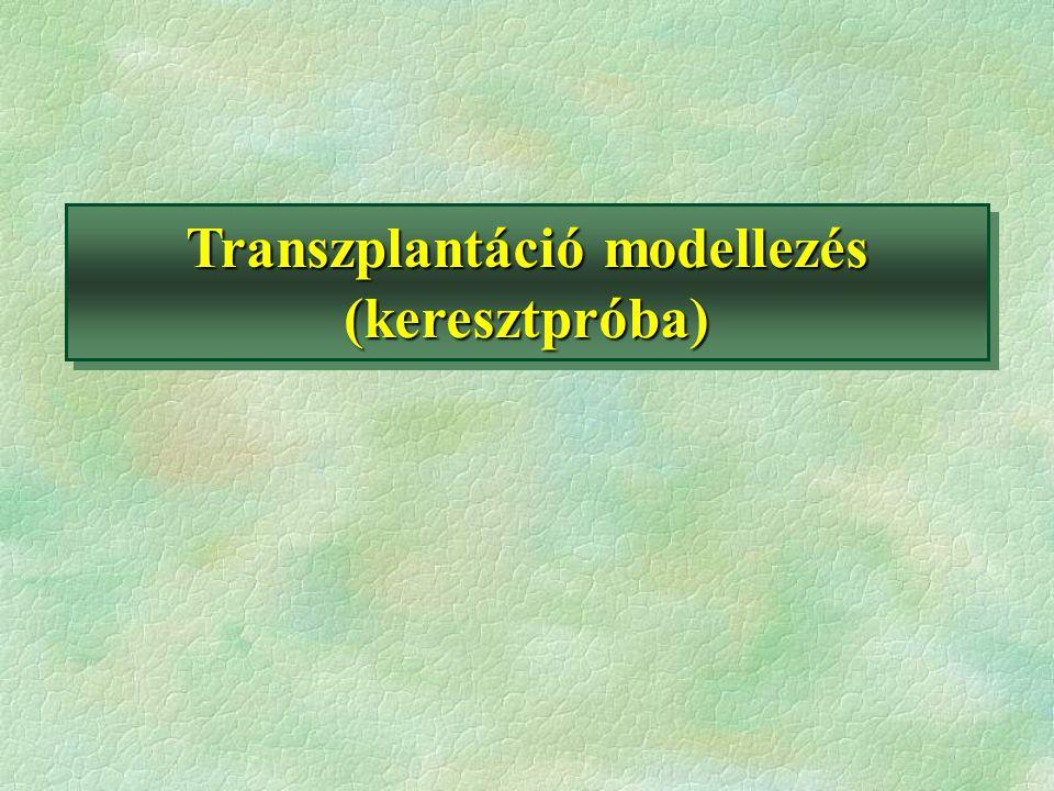 Transzplantáció modellezés (keresztpróba)