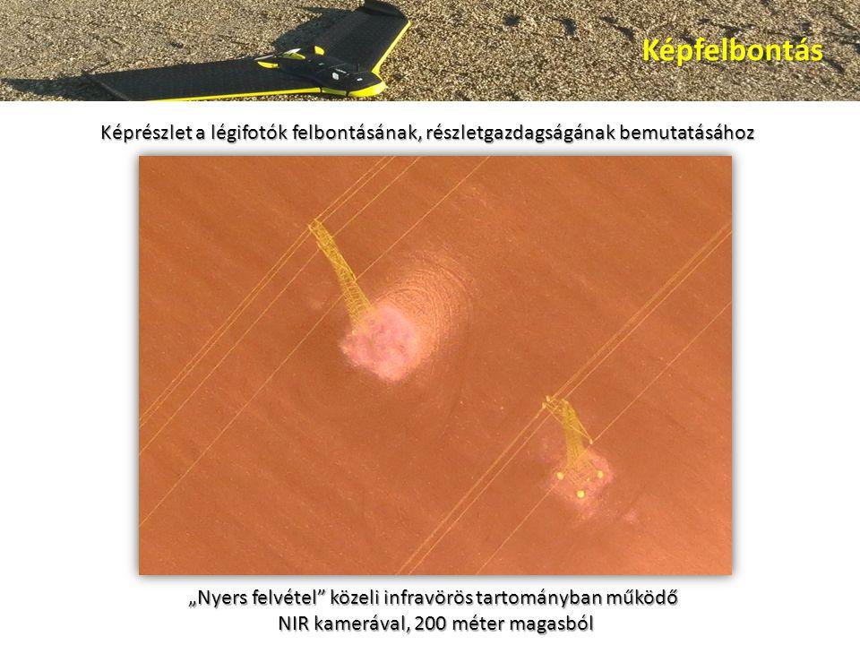 """Képfelbontás Képrészlet a légifotók felbontásának, részletgazdagságának bemutatásához """"Nyers felvétel közeli infravörös tartományban működő NIR kamerával, 200 méter magasból NIR kamerával, 200 méter magasból"""