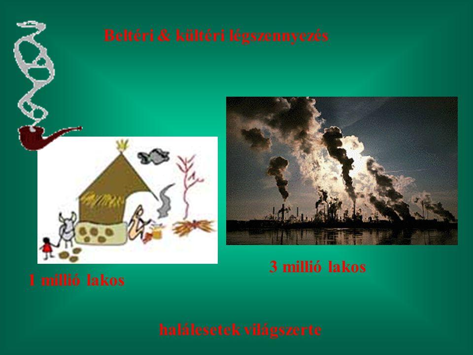 Beltéri & kültéri légszennyezés 3 millió lakos 1 millió lakos halálesetek világszerte