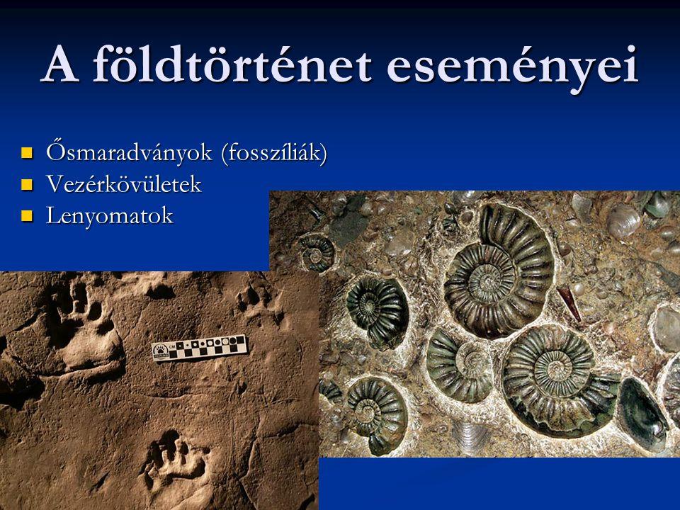 A földtörténet eseményei Ősmaradványok (fosszíliák) Ősmaradványok (fosszíliák) Vezérkövületek Vezérkövületek Lenyomatok Lenyomatok