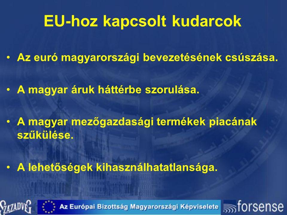 EU-hoz kapcsolt kudarcok Az euró magyarországi bevezetésének csúszása. A magyar áruk háttérbe szorulása. A magyar mezőgazdasági termékek piacának szűk