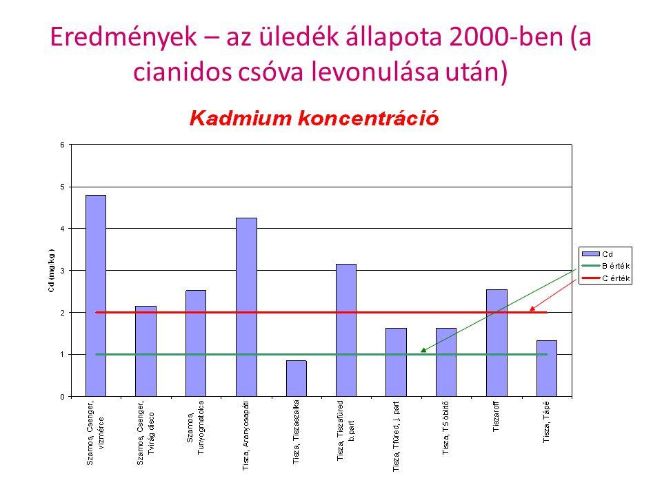 Eredmények – az üledék állapota 2000-ben (a cianidos csóva levonulása után)