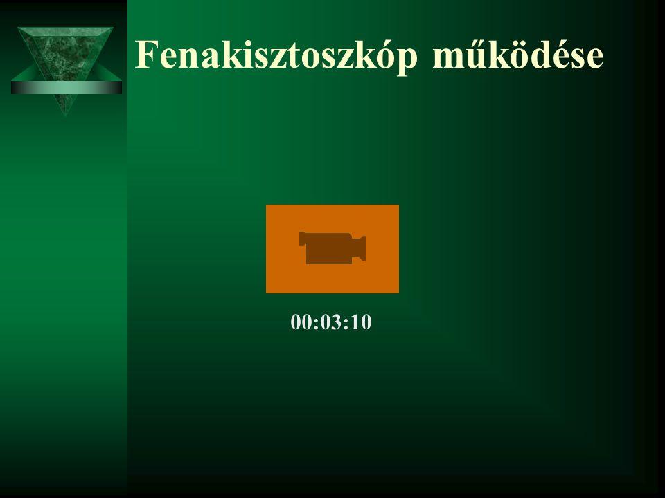 Fenakisztoszkóp működése 00:03:10