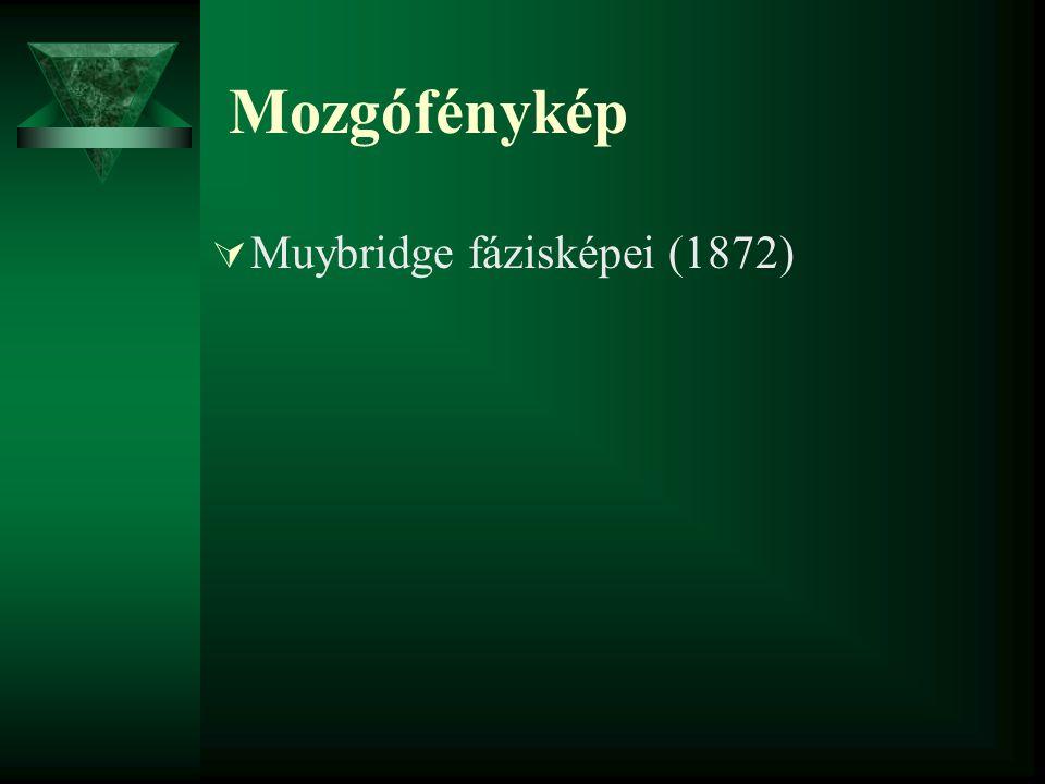 Mozgófénykép  Muybridge fázisképei (1872)