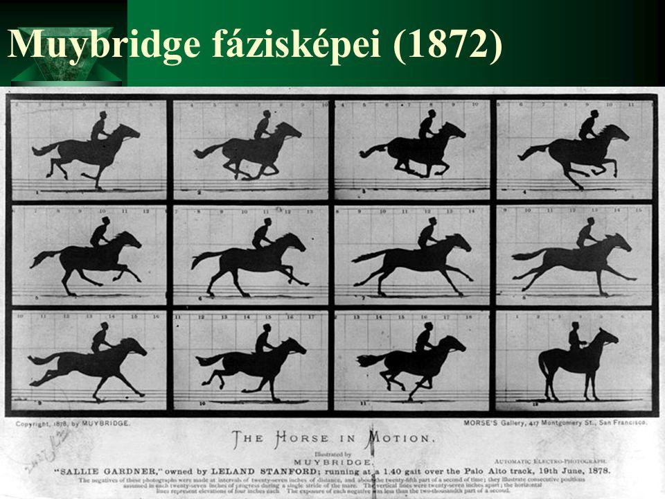 Muybridge fázisképei (1872)