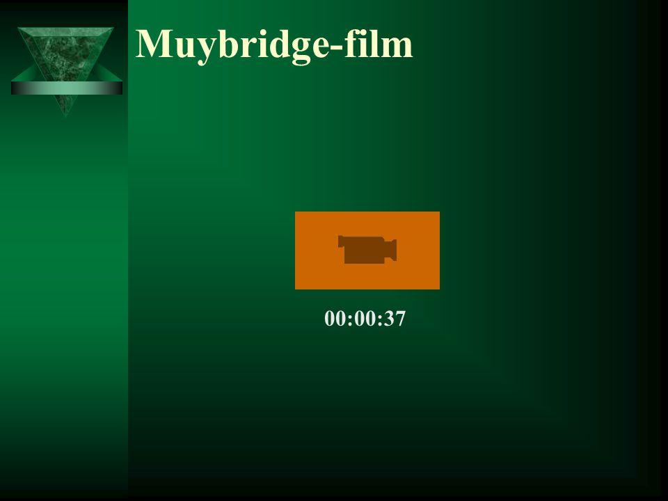 Muybridge-film 00:00:37