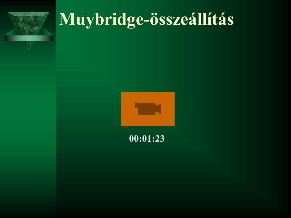 Muybridge-összeállítás 00:01:23