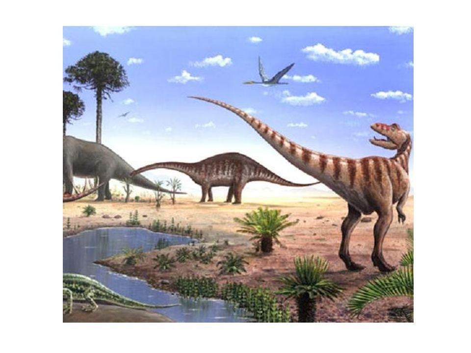 Stegosaurius