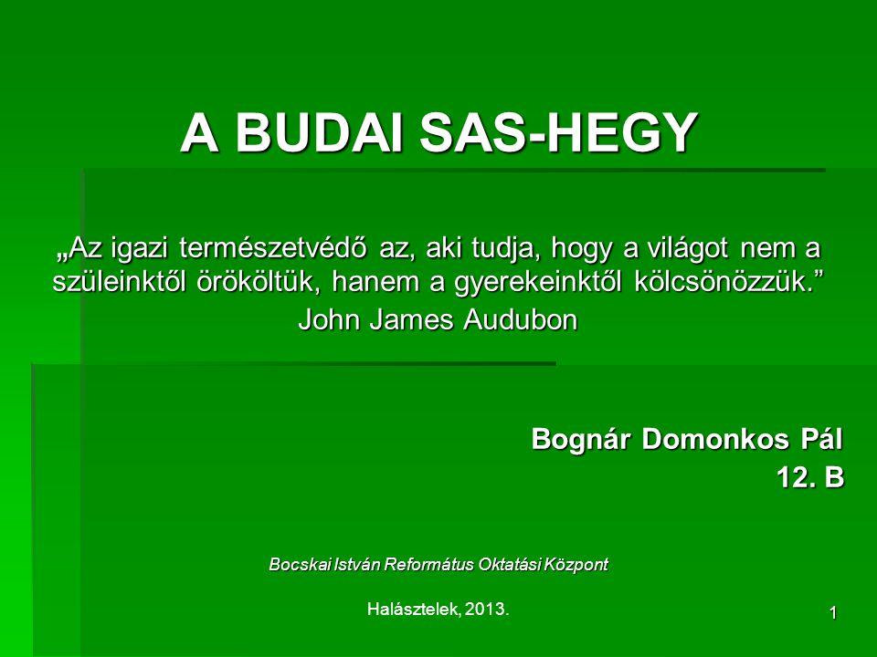 2 A Sas-hegy területe, kőzete  Pénzes Antal (1958) : Sas-hegyi Természetvédelmi Terület  Duna–Ipoly Nemzeti Park Igazgatósága  Nagysága: 30 hektár  Kőzetei: mészkő,dolomit